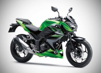 2017 kawasaki z250 india green