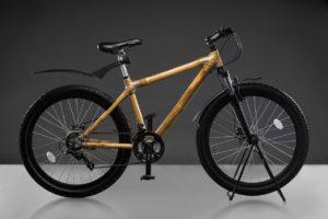 godrej bambusa sports bike (9)